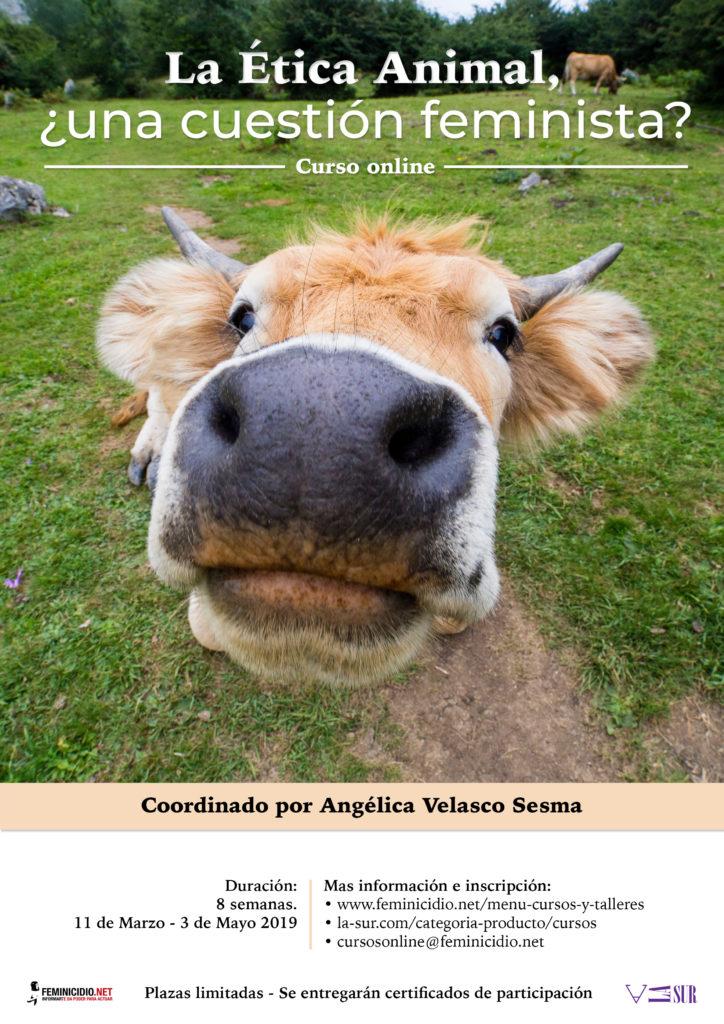 Curso online sobre igualdad animal